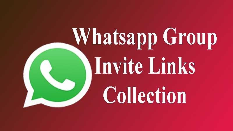 Whatsapp Links